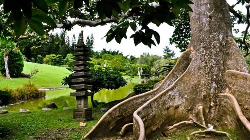 Национальный Ботанический сад Санто-Доминго