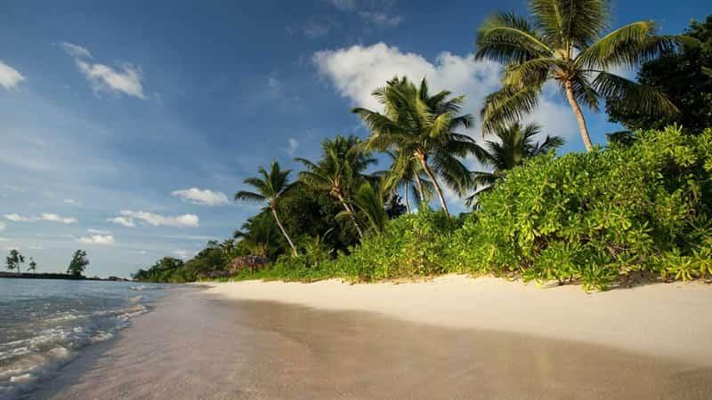 Остров Арид Сейшелы