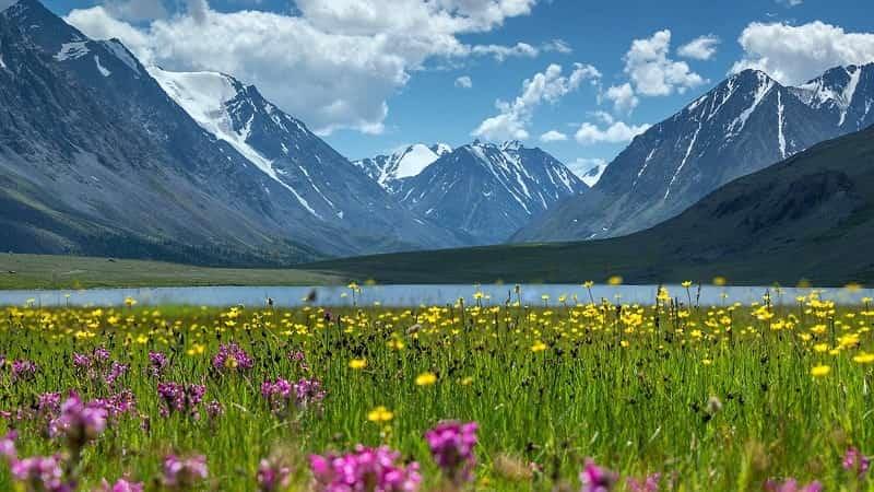 Горы Алтая летом