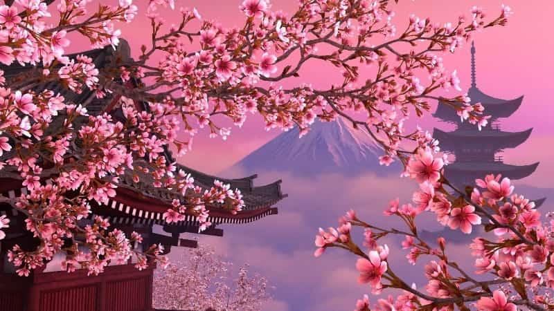 Что посетить в Японии