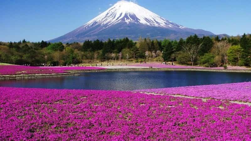 Япония остров Хонсю