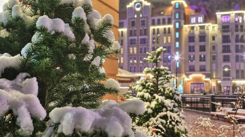 Рождество в Сочи