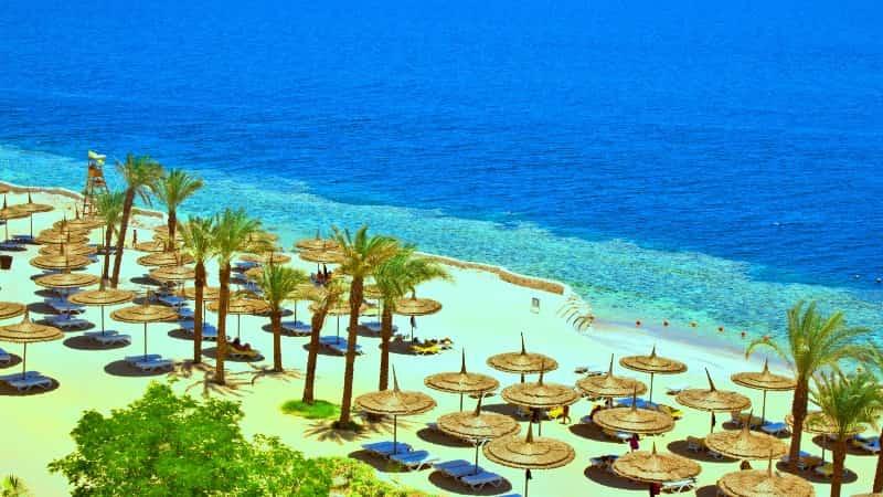 Египет весной фото